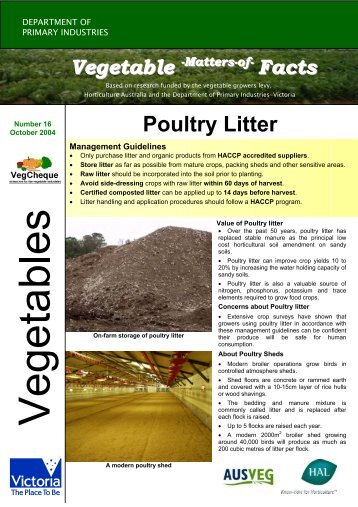 No.16 download pdf 147kb - Vegetable Growers Association of ...
