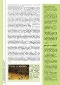 Anno V - Numero 2 - Dicembre 2011 - Comune di Pieve Tesino - Page 6