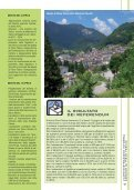 Anno V - Numero 1 - Luglio 2011 - Comune di Pieve Tesino - Page 7