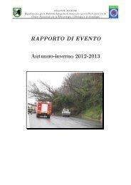 RAPPORTO DI EVENTO Autunno-inverno 2012-2013 - Protezione ...