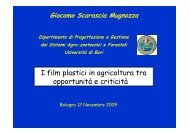 prove sperimentali di film plastici derivati da biomateriali - Tec.bio