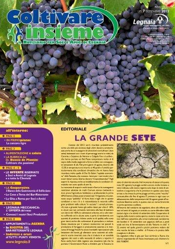 Numero 7 SETTEMBRE - Cooperativa Agricola di Legnaia