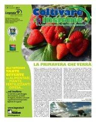 N.4 giugno 2013 - Cooperativa Agricola di Legnaia