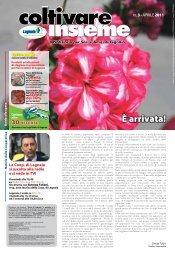 Numero 3 - 2011 - Aprile - Cooperativa Agricola di Legnaia
