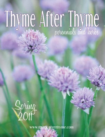 he Year - Thyme After Thyme