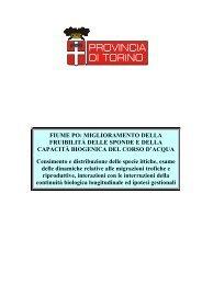 FIUME PO: MIGLIORAMENTO DELLA FRUIBILITÀ ... - Crestsnc.it