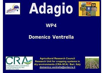 WP4 Domenico Ventrella - adagio