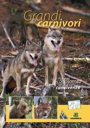 grandi carnivori e cacciatori.pdf - Parco dell'Adamello