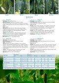 Vitalis Italy 2013PDF - Enza Zaden - Page 4