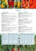 Vitalis Italy 2013PDF - Enza Zaden - Page 5