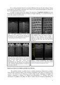 INTRODUCTION - medizintechnik lange - Page 5