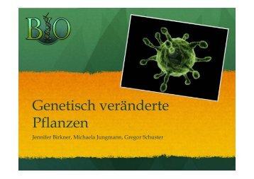 4HBa_Genetisch-verae..