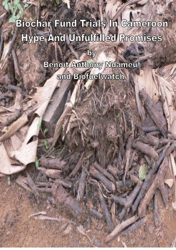 Biochar Fund Trials In Cameroon Hype And Unfulfilled - Biofuelwatch