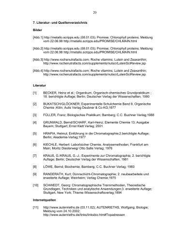 Online dissertation fu berlin