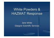 White Powders presentation ds