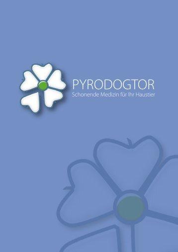 Installation der Software - Pyrodogtor