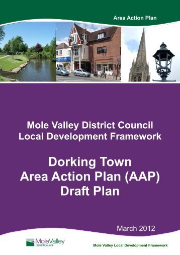Dorking Town AAP: Draft Plan - Mole Valley District Council