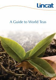 Download Our Guide to World Teas