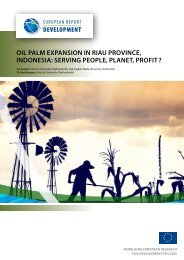 Oil palm expansion in Riau province, Indonesia - European Report ...