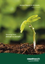 Annual Report & Accounts year ending 2010 PDF - Countrywide ...