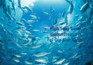 High Seas Gems - IUCN