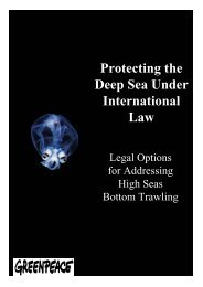Protecting the Deep Sea Under International Law: Legal Options for ...