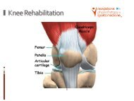 Knee Rehabilitation Exercises
