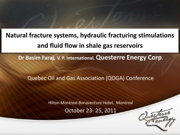 Natural fracture systems, hydraulic fracturing stimulations and fluid ...