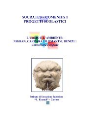 SOCRATES – COMENIUS 1