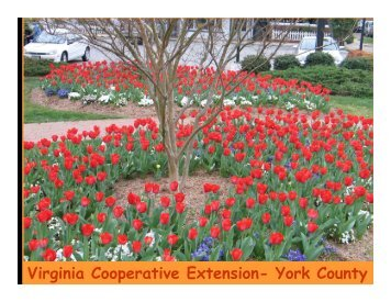 Virginia Cooperative Extension- York County - Gloucester County ...