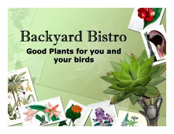 Backyard Bistro - Gloucester County Virginia