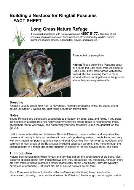 Building a nestbox for Ringtail Possums - Rocklily Wombats