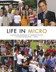 LIFE IN MICRO - MicroSociety