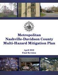 2010 Metro Mitigation Plan