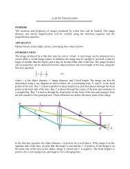 Lab 10 Conservation of Angular Momentum - Physics @ CSU ...