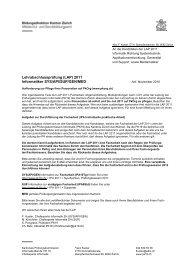 (LAP) 2011 Informatiker SYS/API/SUP/GEN/MED - PK19