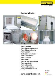 Catalogo Laboratorio - Nabertherm