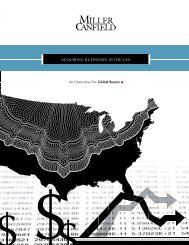 Acquiring Businesses in the USA (An Overview for ... - Miller Canfield