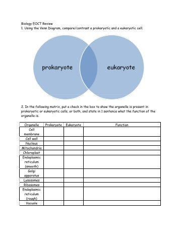 Biology Eoct Review 1 Using The Venn Diagram Comparecontrast