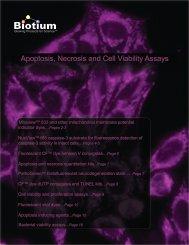 Apoptosis, Necrosis, and Cell Viability Assays web - Biotium