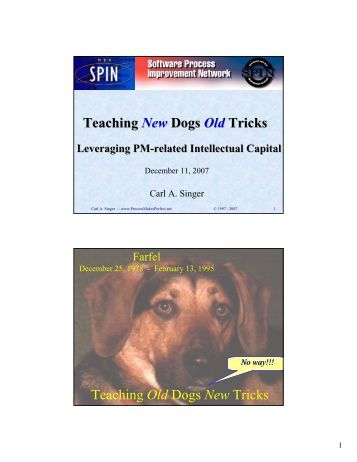 teaching an old dog new tricks essay Do you have an old dog as a pet if not, find a friend or family member who has  an older dog why you're going to teach it a new trick it can be something as.