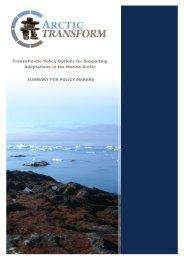 Transatlantic Policy - Arctic transform