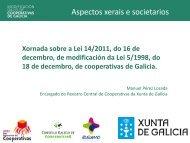 Presentación Manuel Perez Losada (PDF, 0,5 MB) - Consello ...