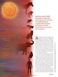 Regulating Evolution - ibdml