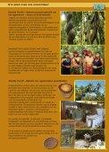 Kruidenpellets voor landschildpadden HerbivoRep ... - Namiba Terra - Page 3