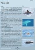 Akvamarin 2012 1.6 MB - Plavi svijet - Page 7