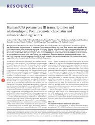 Human RNA polymerase III transcriptomes and relationships to Pol II ...