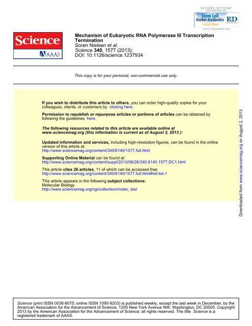 Mechanism of Eukaryotic RNA Polymerase III Transcription ...