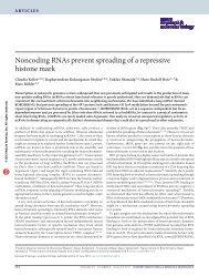 Noncoding RNAs prevent spreading of a repressive histone mark