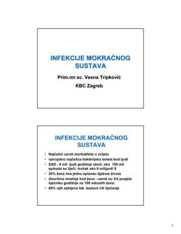 Tripkovic_UTI BSI.pdf